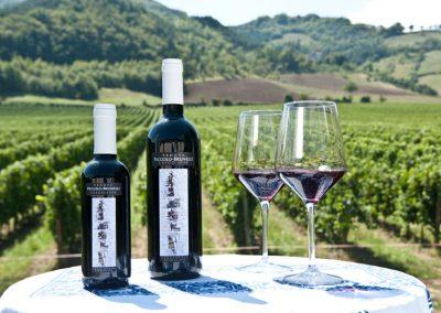 bottiglia_cesco_con_bicchiere
